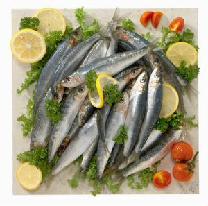 sardines_mini