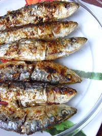 sardina-200